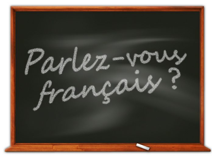 best French language learning app android